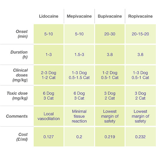 Anaesthesia Medication Chart